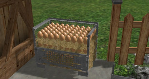 Eggs Pallet Cage