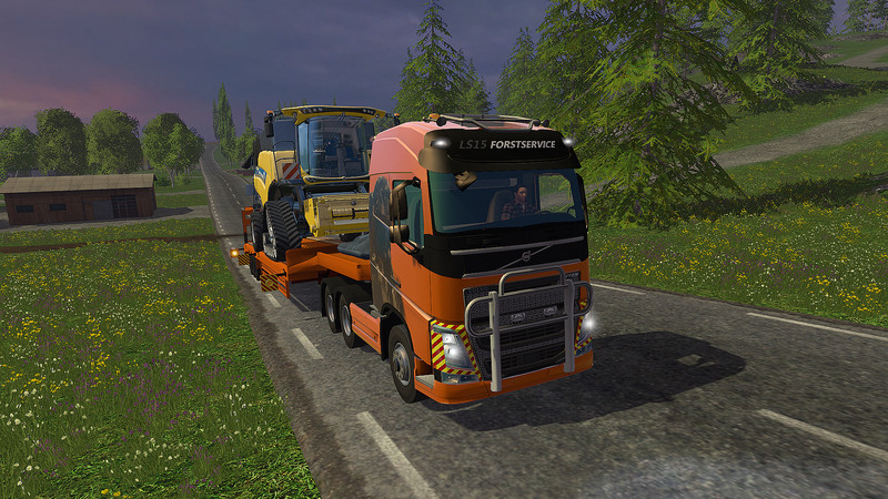 Volvo FH16 2012 Transport